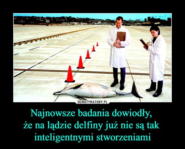 Najnowsze badania dowiodły, że na lądzie delfiny już nie są tak inteligentnymi stworzeniami –