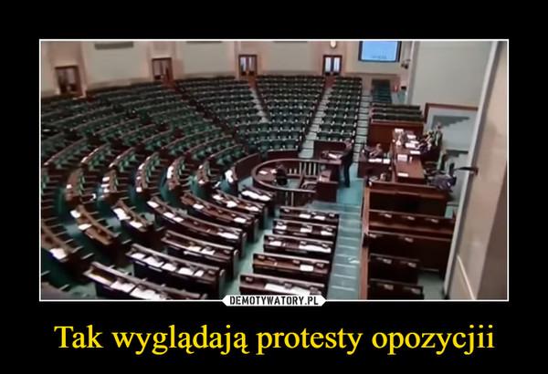Tak wyglądają protesty opozycjii –