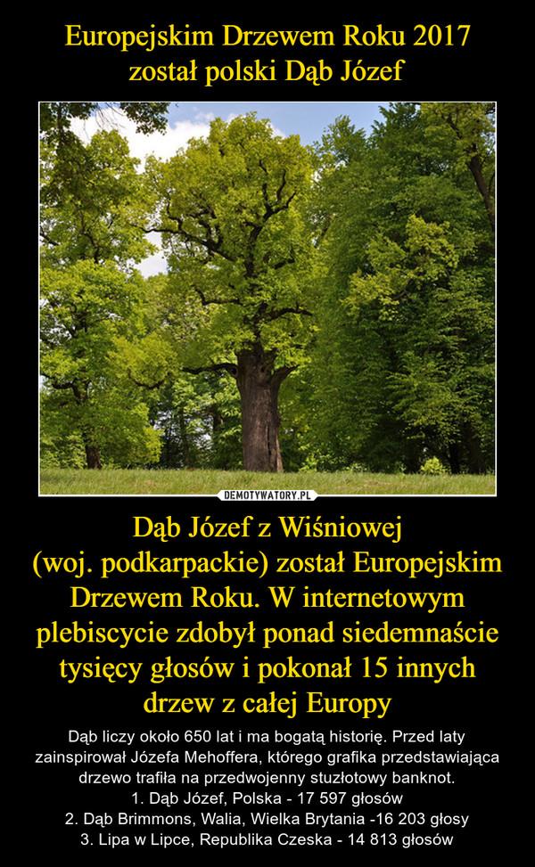 Dąb Józef z Wiśniowej(woj. podkarpackie) został Europejskim Drzewem Roku. W internetowym plebiscycie zdobył ponad siedemnaście tysięcy głosów i pokonał 15 innych drzew z całej Europy – Dąb liczy około 650 lat i ma bogatą historię. Przed laty zainspirował Józefa Mehoffera, którego grafika przedstawiająca drzewo trafiła na przedwojenny stuzłotowy banknot.1. Dąb Józef, Polska - 17 597 głosów2. Dąb Brimmons, Walia, Wielka Brytania -16 203 głosy3. Lipa w Lipce, Republika Czeska - 14 813 głosów