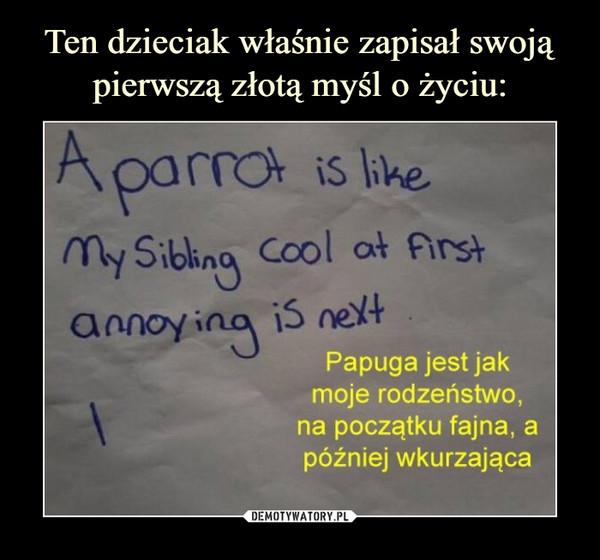 –  Papuga jest jakmoje rodzeństwo,na początku fajna, apóźniej wkurzająca
