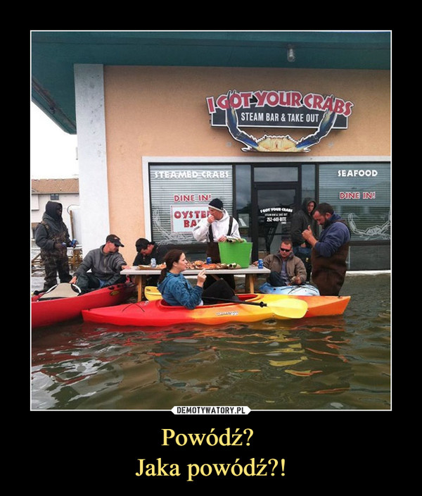 Powódź? Jaka powódź?! –  I got your crabs Steam bar & take out Steamed crabe, dine in oyster bar seafood dine in