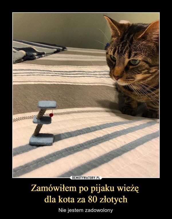 Zamówiłem po pijaku wieżę dla kota za 80 złotych – Nie jestem zadowolony