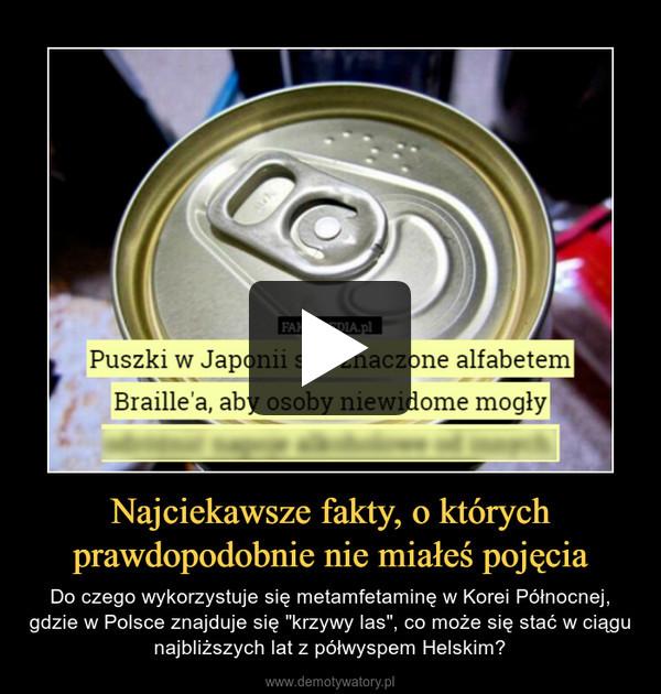 """Najciekawsze fakty, o którychprawdopodobnie nie miałeś pojęcia – Do czego wykorzystuje się metamfetaminę w Korei Północnej, gdzie w Polsce znajduje się """"krzywy las"""", co może się stać w ciągu najbliższych lat z półwyspem Helskim?"""