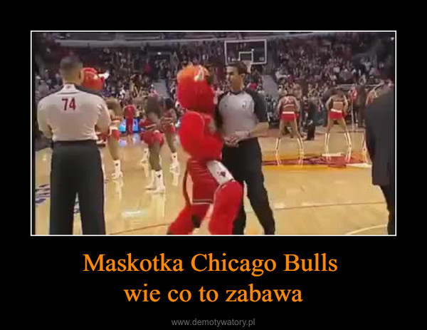 Maskotka Chicago Bulls wie co to zabawa –
