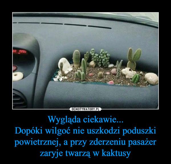 Wygląda ciekawie...Dopóki wilgoć nie uszkodzi poduszki powietrznej, a przy zderzeniu pasażer zaryje twarzą w kaktusy –