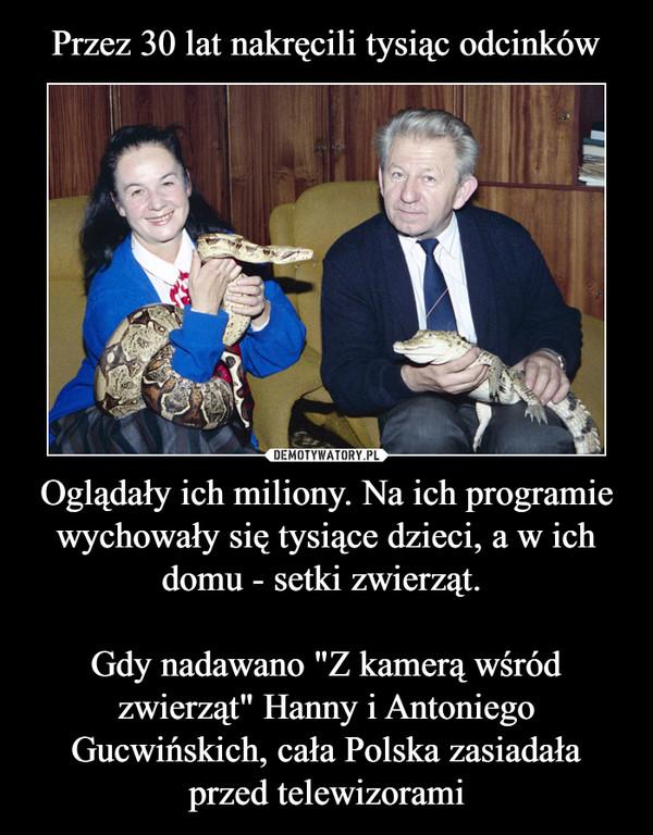 """Oglądały ich miliony. Na ich programie wychowały się tysiące dzieci, a w ich domu - setki zwierząt. Gdy nadawano """"Z kamerą wśród zwierząt"""" Hanny i Antoniego Gucwińskich, cała Polska zasiadała przed telewizorami –"""