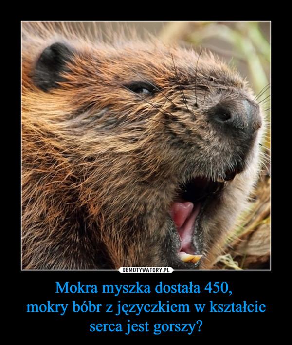 Mokra myszka dostała 450, mokry bóbr z języczkiem w kształcie serca jest gorszy? –