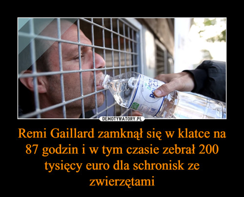 Remi Gaillard zamknął się w klatce na 87 godzin i w tym czasie zebrał 200 tysięcy euro dla schronisk ze zwierzętami