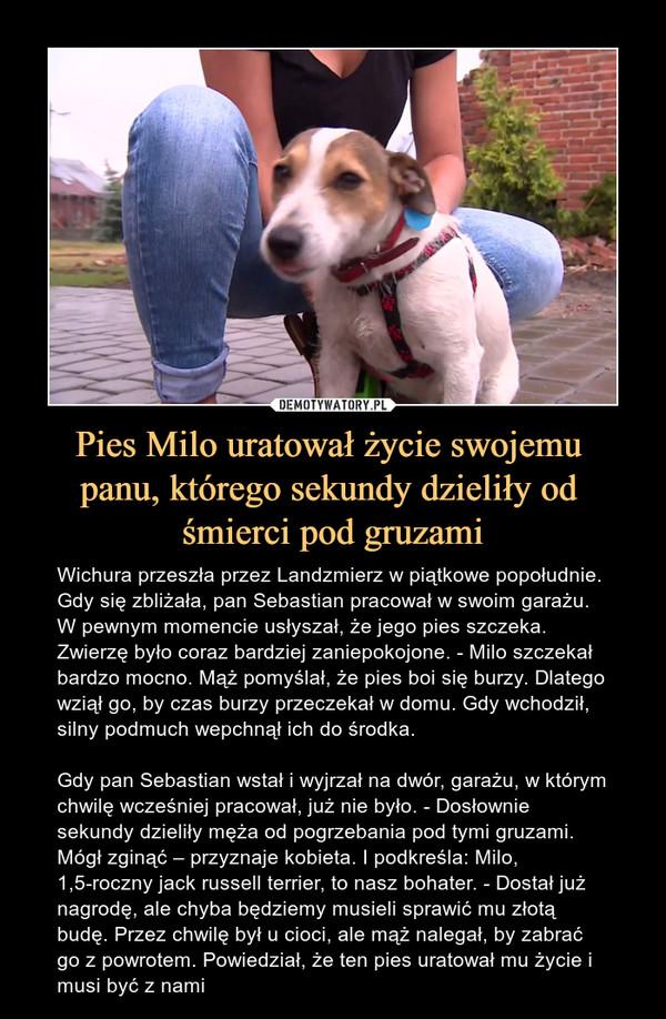 Pies Milo uratował życie swojemu panu, którego sekundy dzieliły od śmierci pod gruzami – Wichura przeszła przez Landzmierz w piątkowe popołudnie. Gdy się zbliżała, pan Sebastian pracował w swoim garażu. W pewnym momencie usłyszał, że jego pies szczeka. Zwierzę było coraz bardziej zaniepokojone. - Milo szczekał bardzo mocno. Mąż pomyślał, że pies boi się burzy. Dlatego wziął go, by czas burzy przeczekał w domu. Gdy wchodził, silny podmuch wepchnął ich do środka.Gdy pan Sebastian wstał i wyjrzał na dwór, garażu, w którym chwilę wcześniej pracował, już nie było. - Dosłownie sekundy dzieliły męża od pogrzebania pod tymi gruzami. Mógł zginąć – przyznaje kobieta. I podkreśla: Milo, 1,5-roczny jack russell terrier, to nasz bohater. - Dostał już nagrodę, ale chyba będziemy musieli sprawić mu złotą budę. Przez chwilę był u cioci, ale mąż nalegał, by zabrać go z powrotem. Powiedział, że ten pies uratował mu życie i musi być z nami