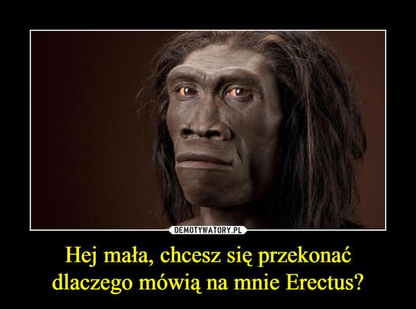 Hej mała, chcesz się przekonaćdlaczego mówią na mnie Erectus? –