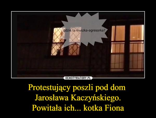 Protestujący poszli pod dom Jarosława Kaczyńskiego.Powitała ich... kotka Fiona –  Gdzie ta myszka agresorka?