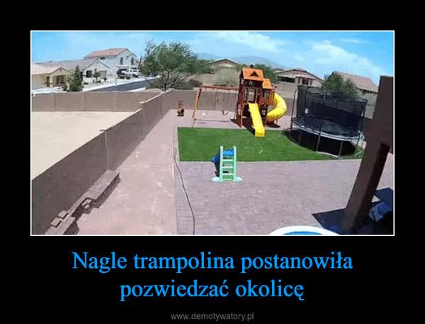 Nagle trampolina postanowiła pozwiedzać okolicę –