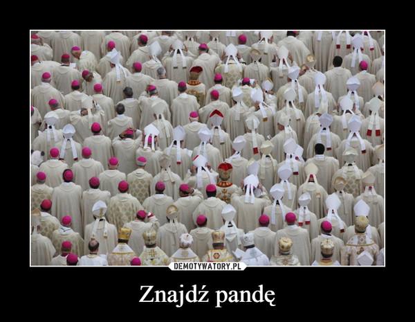 Znajdź pandę –