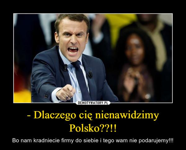 - Dlaczego cię nienawidzimy Polsko??!! – Bo nam kradniecie firmy do siebie i tego wam nie podarujemy!!!