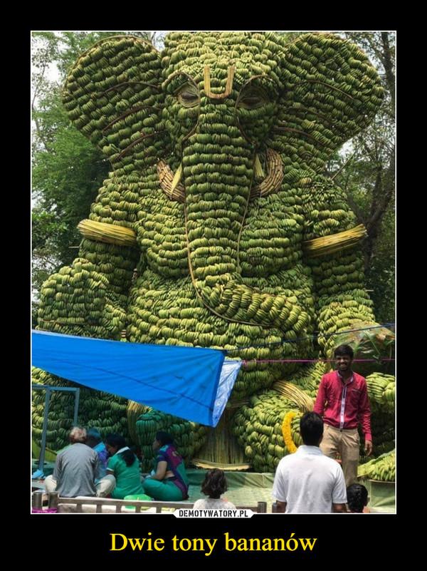 Dwie tony bananów –
