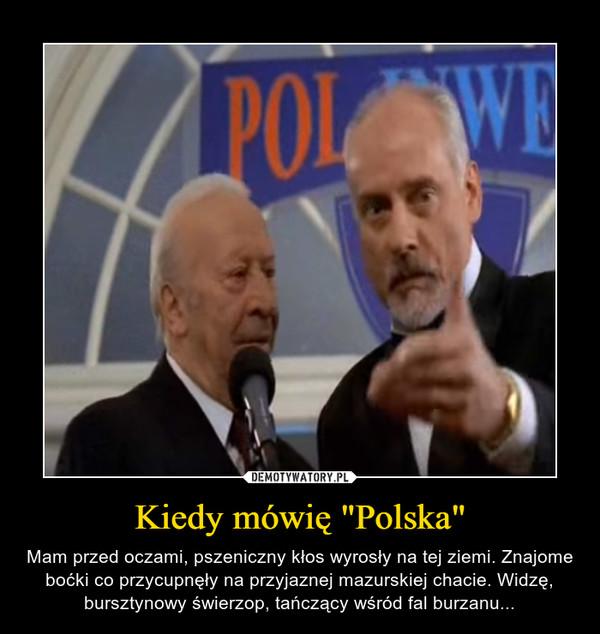 """Kiedy mówię """"Polska"""" – Mam przed oczami, pszeniczny kłos wyrosły na tej ziemi. Znajome boćki co przycupnęły na przyjaznej mazurskiej chacie. Widzę, bursztynowy świerzop, tańczący wśród fal burzanu..."""