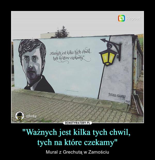 """""""Ważnych jest kilka tych chwil, tych na które czekamy"""" – Mural z Grechutą w Zamościu"""