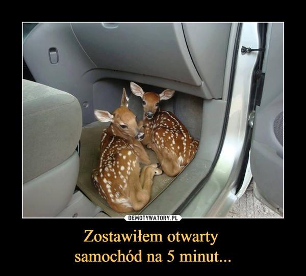Zostawiłem otwarty samochód na 5 minut... –