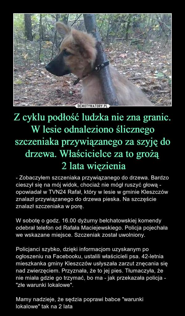 """Z cyklu podłość ludzka nie zna granic. W lesie odnaleziono ślicznego szczeniaka przywiązanego za szyję do drzewa. Właścicielce za to grożą 2 lata więzienia – - Zobaczyłem szczeniaka przywiązanego do drzewa. Bardzo cieszył się na mój widok, chociaż nie mógł ruszyć głową - opowiadał w TVN24 Rafał, który w lesie w gminie Kleszczów znalazł przywiązanego do drzewa pieska. Na szczęście znalazł szczeniaka w porę.W sobotę o godz. 16.00 dyżurny bełchatowskiej komendy odebrał telefon od Rafała Maciejewskiego. Policja pojechała we wskazane miejsce. Szczeniak został uwolniony.Policjanci szybko, dzięki informacjom uzyskanym po ogłoszeniu na Facebooku, ustalili właścicieli psa. 42-letnia mieszkanka gminy Kleszczów usłyszała zarzut znęcania się nad zwierzęciem. Przyznała, że to jej pies. Tłumaczyła, że nie miała gdzie go trzymać, bo ma - jak przekazała policja - """"złe warunki lokalowe"""".Mamy nadzieje, że sędzia poprawi babce """"warunki lokalowe"""" tak na 2 lata"""
