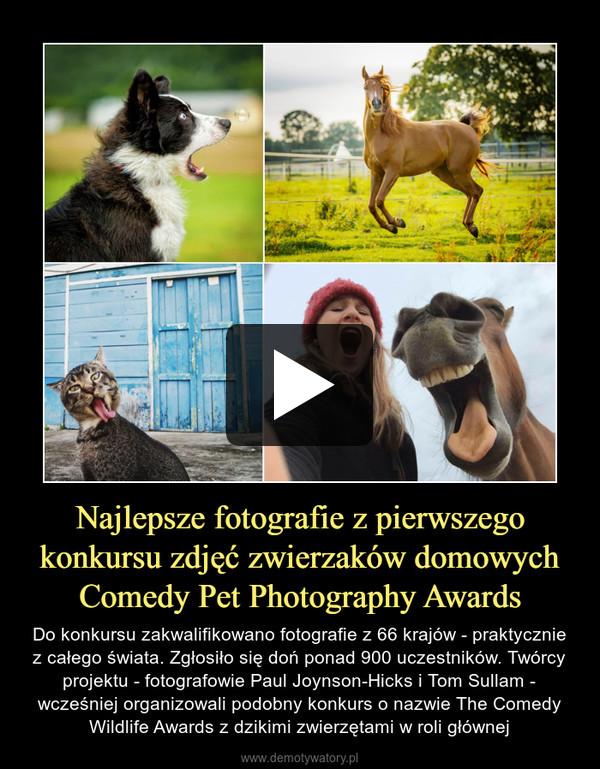 Najlepsze fotografie z pierwszego konkursu zdjęć zwierzaków domowych Comedy Pet Photography Awards – Do konkursu zakwalifikowano fotografie z 66 krajów - praktycznie z całego świata. Zgłosiło się doń ponad 900 uczestników. Twórcy projektu - fotografowie Paul Joynson-Hicks i Tom Sullam - wcześniej organizowali podobny konkurs o nazwie The Comedy Wildlife Awards z dzikimi zwierzętami w roli głównej