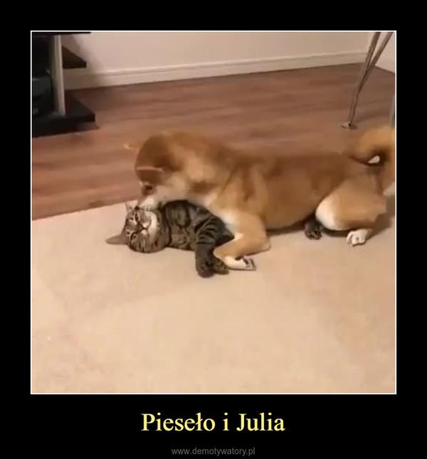 Pieseło i Julia –