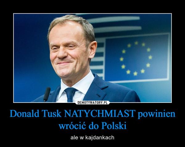 Donald Tusk NATYCHMIAST powinien wrócić do Polski – ale w kajdankach