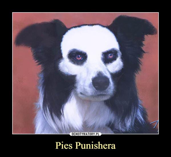 Pies Punishera –