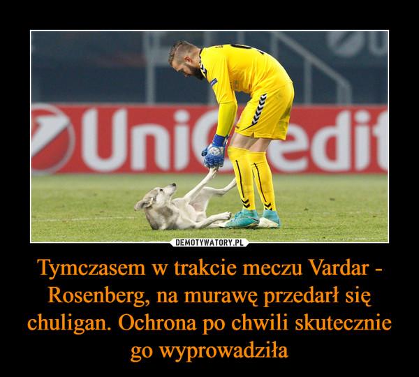 Tymczasem w trakcie meczu Vardar - Rosenberg, na murawę przedarł się chuligan. Ochrona po chwili skutecznie go wyprowadziła –