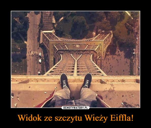 Widok ze szczytu Wieży Eiffla! –