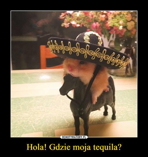 Hola! Gdzie moja tequila?