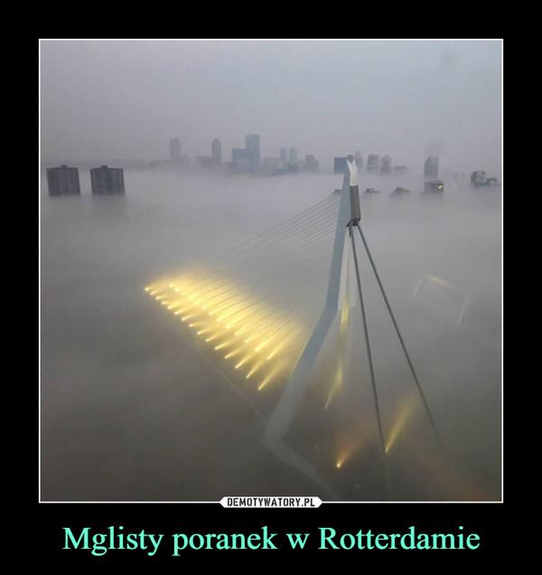 Mglisty poranek w Rotterdamie –