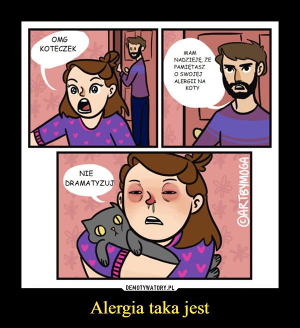 Alergia taka jest –
