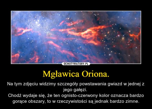 Mgławica Oriona. – Na tym zdjęciu widzimy szczegóły powstawania gwiazd w jednej z jego gałęzi. Chodź wydaje się, że ten ognisto-czerwony kolor oznacza bardzo gorące obszary, to w rzeczywistości są jednak bardzo zimne.