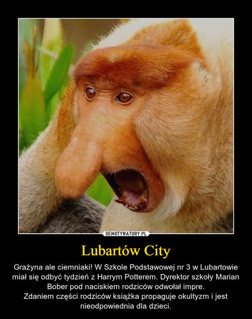 Lubartów City