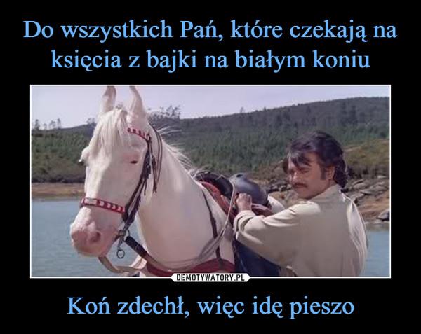 Koń zdechł, więc idę pieszo –