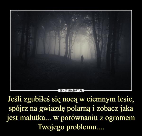 Jeśli zgubiłeś się nocą w ciemnym lesie, spójrz na gwiazdę polarną i zobacz jaka jest malutka... w porównaniu z ogromem Twojego problemu.... –