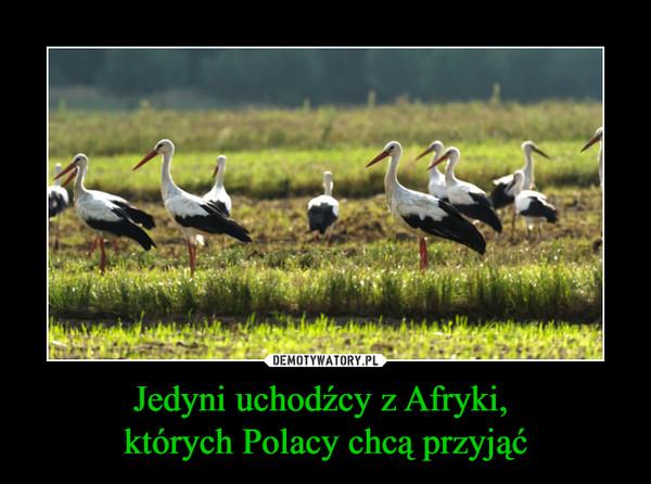 Jedyni uchodźcy z Afryki, których Polacy chcą przyjąć –