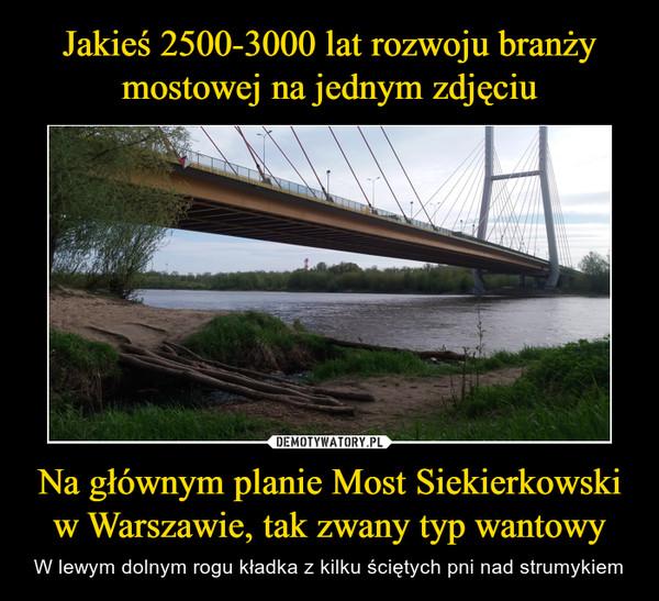 Na głównym planie Most Siekierkowski w Warszawie, tak zwany typ wantowy – W lewym dolnym rogu kładka z kilku ściętych pni nad strumykiem