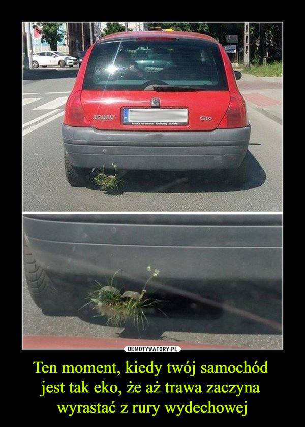 Ten moment, kiedy twój samochód jest tak eko, że aż trawa zaczyna wyrastać z rury wydechowej –