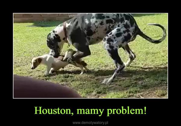Houston, mamy problem! –