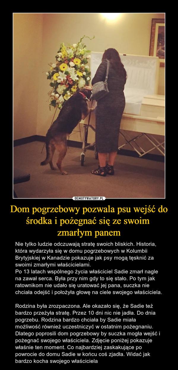 Dom pogrzebowy pozwala psu wejść do środka i pożegnać się ze swoim zmarłym panem – Nie tylko ludzie odczuwają stratę swoich bliskich. Historia, która wydarzyła się w domu pogrzebowych w Kolumbii Brytyjskiej w Kanadzie pokazuje jak psy mogą tęsknić za swoimi zmarłymi właścicielami. Po 13 latach wspólnego życia właściciel Sadie zmarł nagle na zawał serca. Była przy nim gdy to się stało. Po tym jak ratownikom nie udało się uratować jej pana, suczka nie chciała odejść i położyła głowę na ciele swojego właściciela.Rodzina była zrozpaczona. Ale okazało się, że Sadie też bardzo przeżyła stratę. Przez 10 dni nic nie jadła. Do dnia pogrzebu. Rodzina bardzo chciała by Sadie miała możliwość również uczestniczyć w ostatnim pożegnaniu. Dlatego poprosili dom pogrzebowy by suczka mogła wejść i pożegnać swojego właściciela. Zdjęcie poniżej pokazuje właśnie ten moment. Co najbardziej zaskakujące po powrocie do domu Sadie w końcu coś zjadła. Widać jak bardzo kocha swojego właściciela