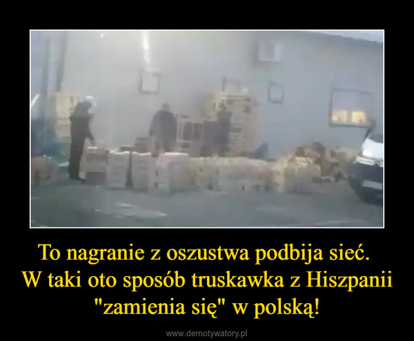 """To nagranie z oszustwa podbija sieć. W taki oto sposób truskawka z Hiszpanii """"zamienia się"""" w polską! –"""