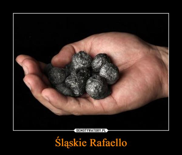 Śląskie Rafaello –