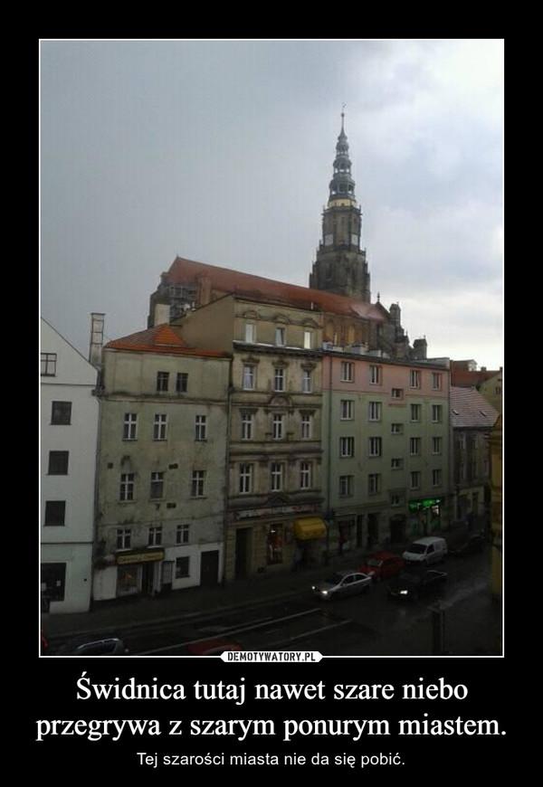 Świdnica tutaj nawet szare niebo przegrywa z szarym ponurym miastem. – Tej szarości miasta nie da się pobić.