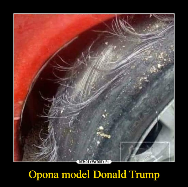 Opona model Donald Trump –