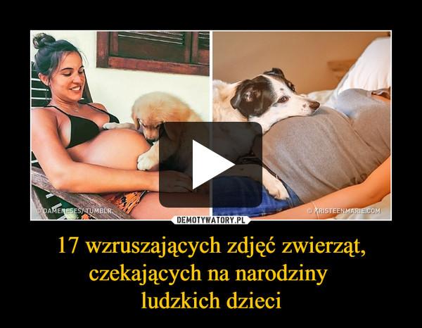 17 wzruszających zdjęć zwierząt, czekających na narodziny ludzkich dzieci –