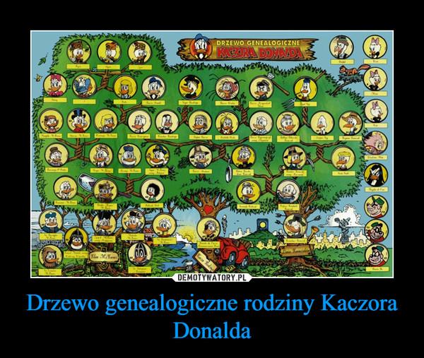 Drzewo genealogiczne rodziny Kaczora Donalda –