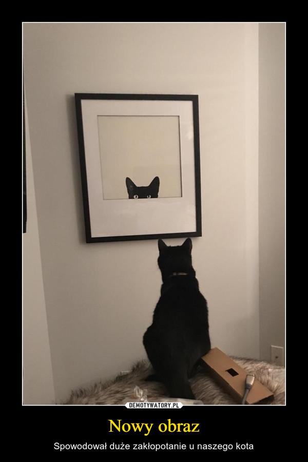 Nowy obraz – Spowodował duże zakłopotanie u naszego kota