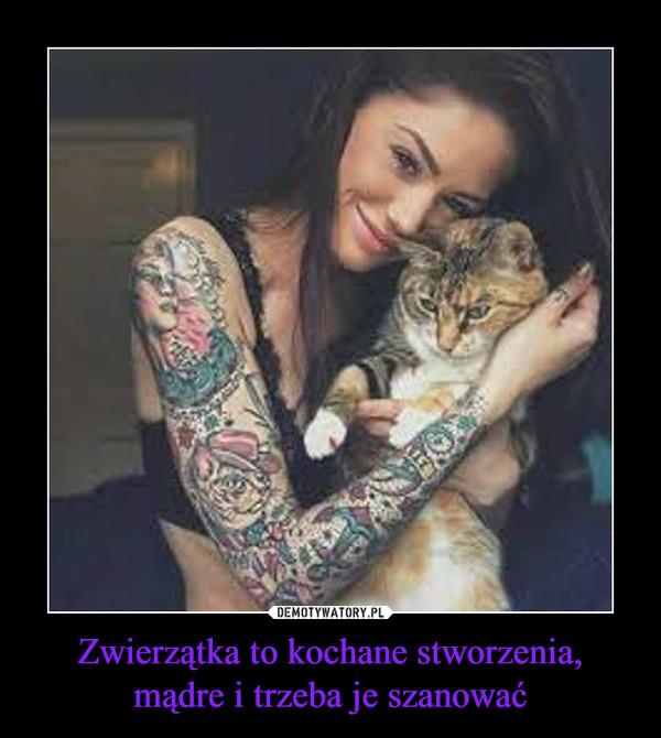 Zwierzątka to kochane stworzenia, mądre i trzeba je szanować –