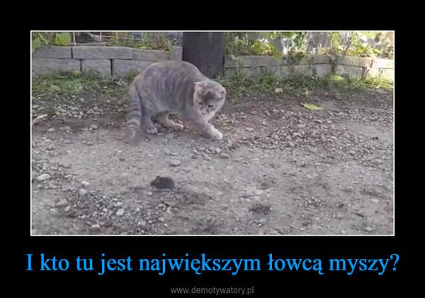 I kto tu jest największym łowcą myszy? –